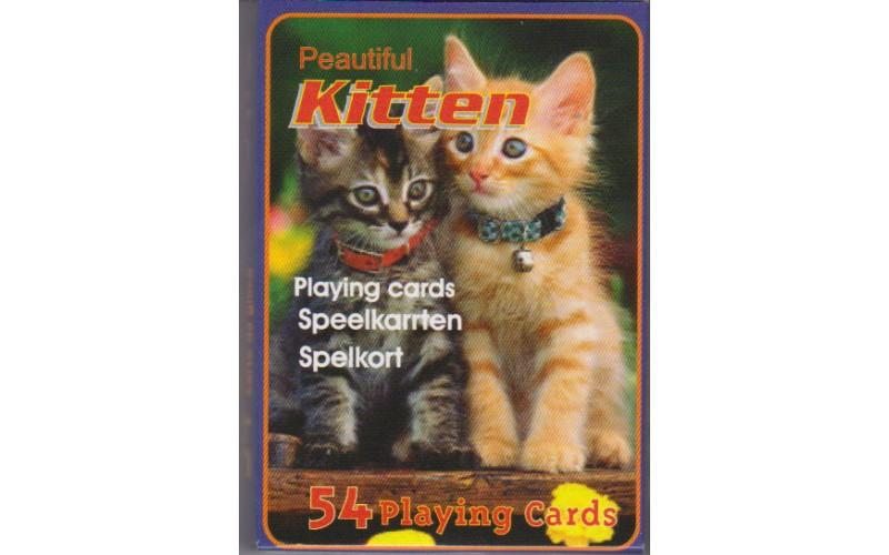 Τράπουλα: Kitty Cats, Beautiful Cats, Kitten