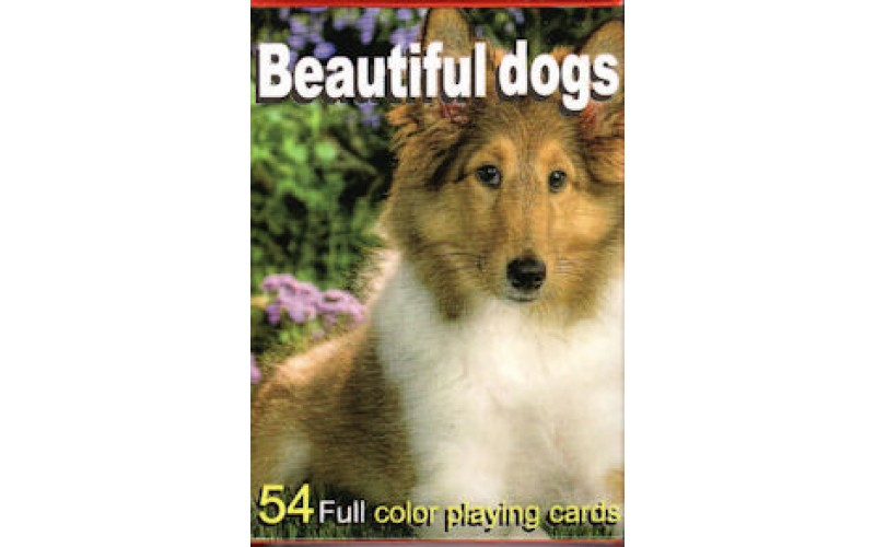 Τράπουλα:Beautiful Dogs